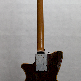 1962 Arnold Hoyer model 34 bass6